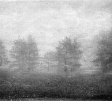 Winter Beckons by Richard Murch