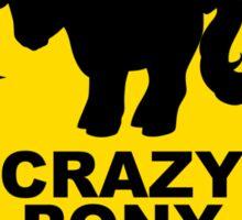 Warning: Crazy Pony Lady Sticker
