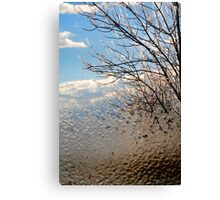 After the Freezing Rain 2 - Through the Window Canvas Print