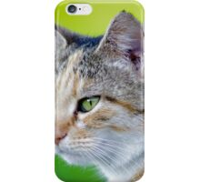 Smokey The Cat on Grass iPhone Case/Skin