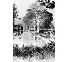 Reflection in Pond - Inverted - Kanata Ontario Photographic Print
