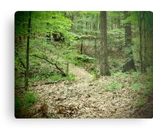 The Path to Peace Metal Print