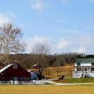 The Family Farm by barnsis