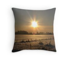 First winterday on 2010 Throw Pillow