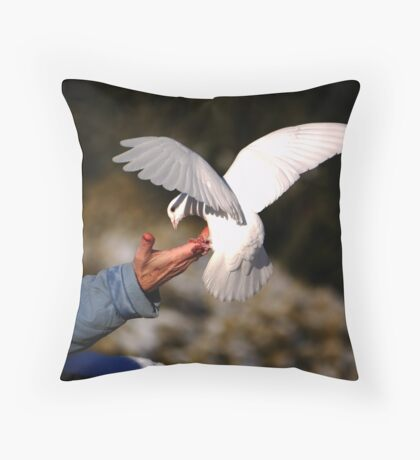 What Barry's new lens did Throw Pillow