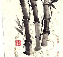 Bamboo trees by Carole Chaplin