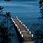 A little pier on Nahuel Huapi by vesa50