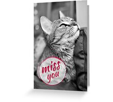 Black and white photo with the cat Greeting Card