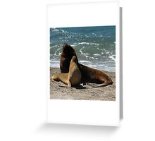 Awesome South American Sea Lion Greeting Card
