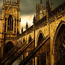 York Minster by Alison Ward
