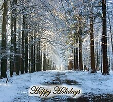 Lane through snowy woods - Happy Holidays! by steppeland-2