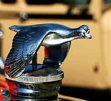 Flying bird hood ornament by Thad Zajdowicz