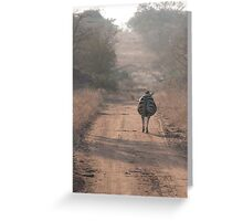 Pregnancy down the road Greeting Card