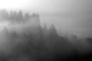 misty ridge by dedmanshootn