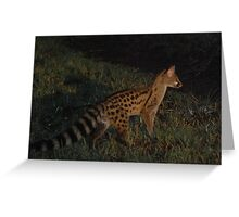 Random Genet Greeting Card
