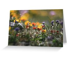Helios Cliff Flowers -Vintage Russian Lens on Canon Eos Greeting Card