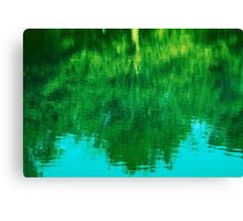 Art of Nature Canvas Print