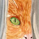 Hiding Behind the Drapes by Amy-Elyse Neer