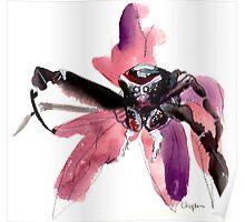 Purple Spider Poster