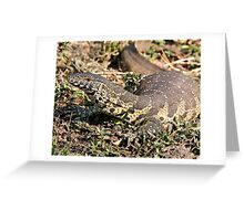 Nile Water Monitor Greeting Card