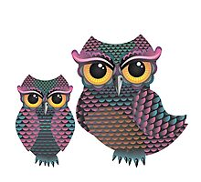 Pink and Blue Color Owl Photographic Print