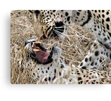 Leopard Mom And Son Canvas Print
