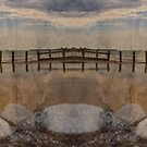 Symmetry by Simone Riley