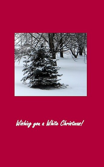 Wishing you a White Christmas! by Debbie Meyers