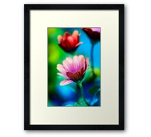 Life in the greenhouse 2 Framed Print