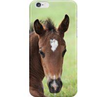 Cute Foal iPhone Case/Skin