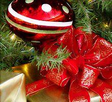 Merry Christmas 2010 by Wanda Raines