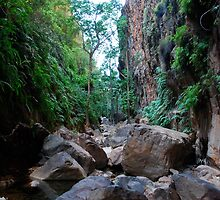 Snapshot of the inside of El Questro Gorge by Natika