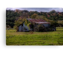 Overgrown Corrugated Tin Shed Canvas Print