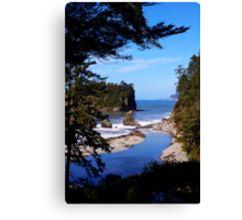 spectacular ruby beach, wa, usa Canvas Print