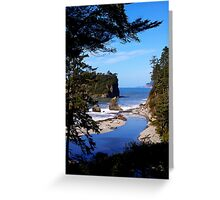 spectacular ruby beach, wa, usa Greeting Card