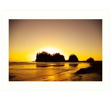 sunset gold, james island, washington, usa Art Print