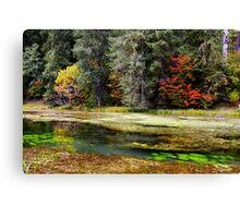 autumn spring Canvas Print