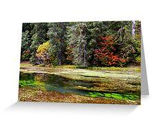 autumn spring Greeting Card
