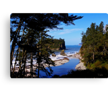 ruby beach, washington, usa landscape Canvas Print