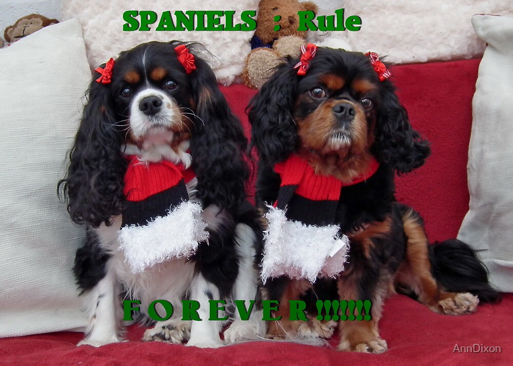 SPANIELS Forever by AnnDixon