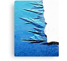 Freezing in Process Canvas Print