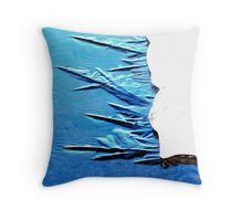 Freezing in Process Throw Pillow