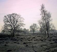 A Cold Early Morning Walk by ienemien