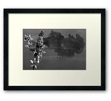 Fragrance Of Grayness Framed Print
