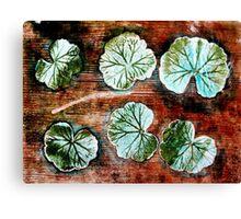 Novembers Garden 12 Canvas Print