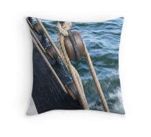 For the Love of Water Throw Pillow