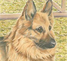 Sophie the German Shepherd by FranEvans