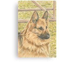 Sophie the German Shepherd Canvas Print