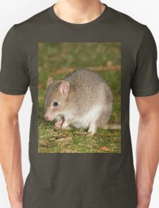 Cool Brush-tailed Bettong T-Shirt