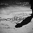 Goodbye by Adam Marlow